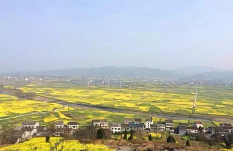 Map-of-Flower-Blossom-in-Chongqing-Travel-with-the-Map-4