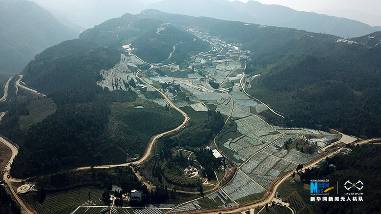 Two-Thousand-Mu-of-Tea-Garden-In-Wulong-1