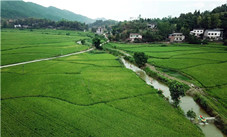 unique-experience-of-drifting-alongside-paddy-fields-in-liangping