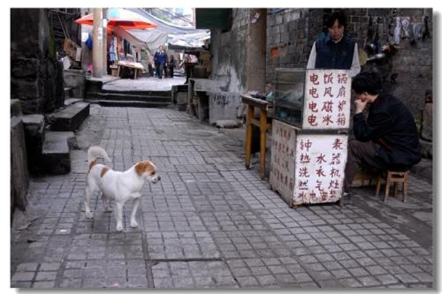 discover-the-old-memories-in-danzishi-old-street-4